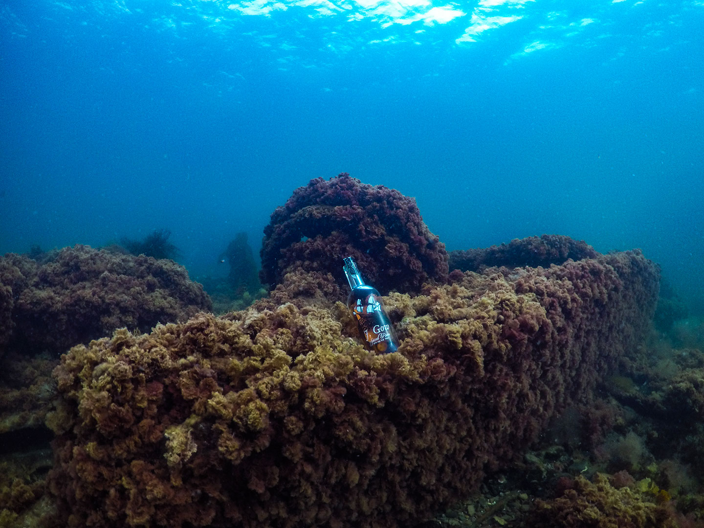 J Gow rum underwater on a shipwreck