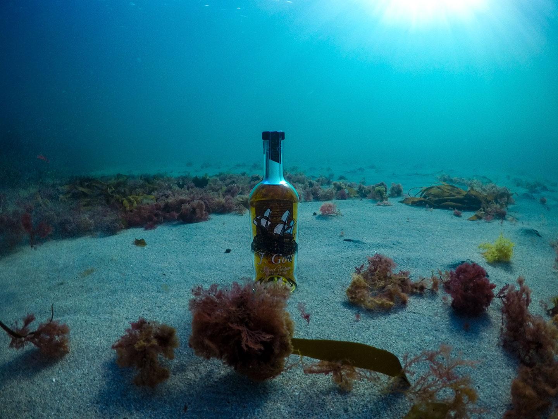 j gow rum sea bed 3